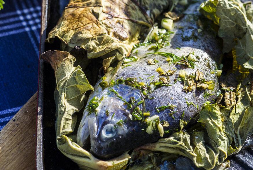 Särisevat jaani! | Rabarberilehes grillitud beebiforell