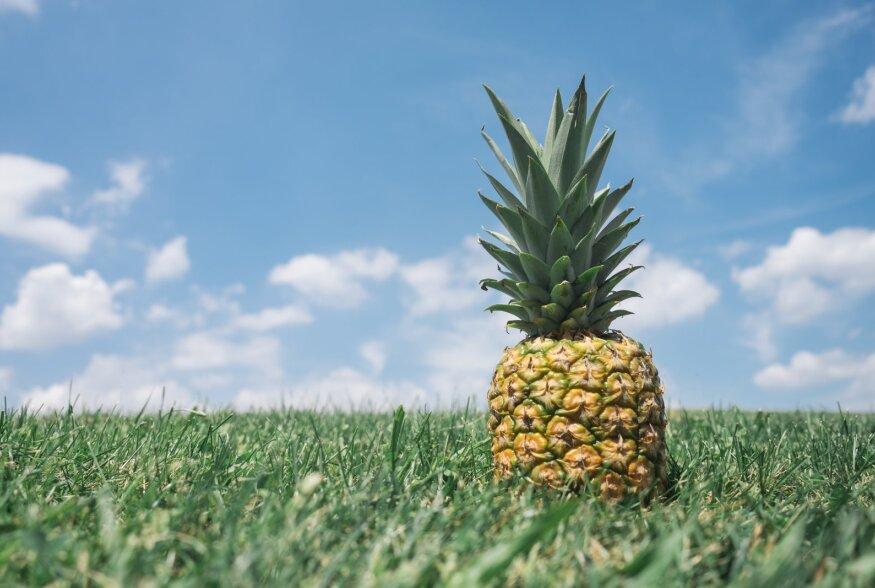 ÄRA MINE MÖÖDA! Ananass turgutab seedimist
