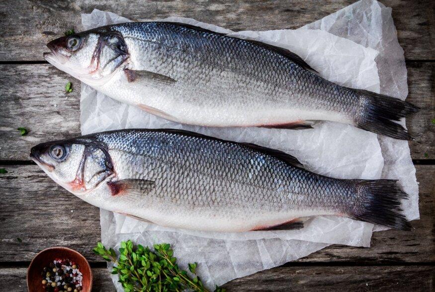 MAAILMAMEREDE EKSOOTIKA KODULAUALE: Mida head valmistada näiteks merikeelest, stauriidist, huntahvenast või kefaalist?
