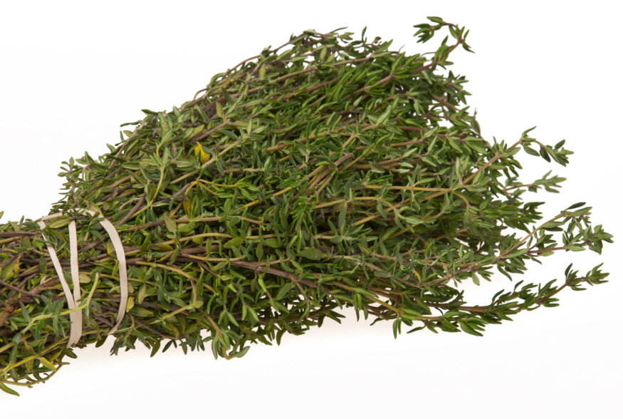 TOIDUTARKUS: Tüümian on kuninglik (maitse- ja ravim-) taim