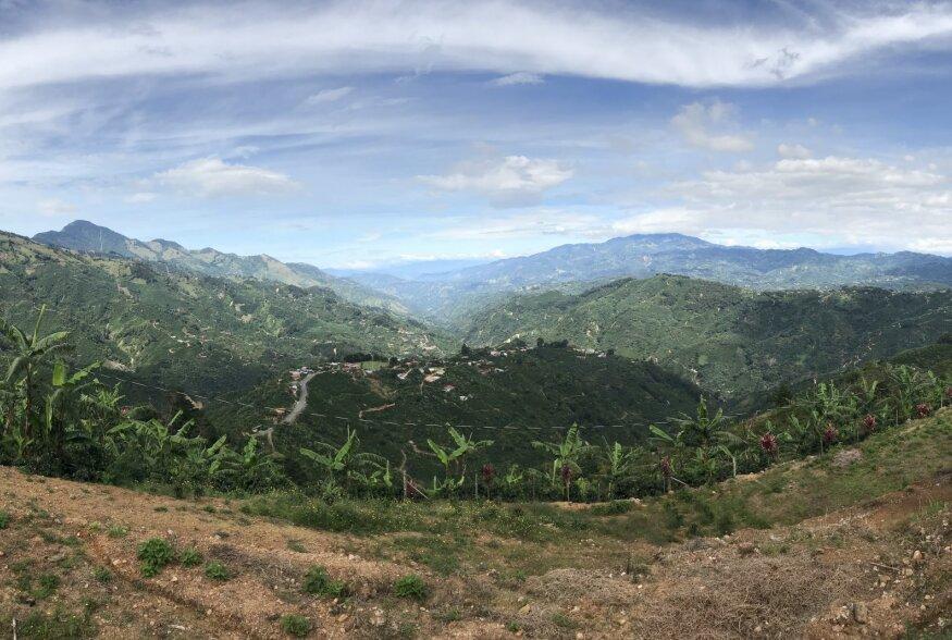 KOHVIREIS   Costa Rica, kus porgandi ja peedi asemel kasvab banaan ja kohv