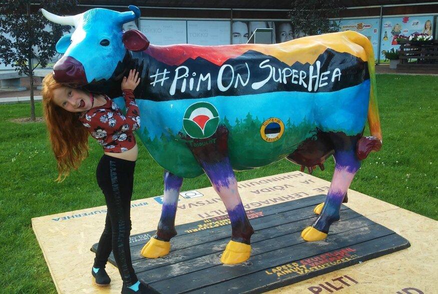 Piimalehma tänavuaastase kujunduse autor Renata Kallasmaa külastas lehmakest tema eelmises peatuspaigas Viljandis.