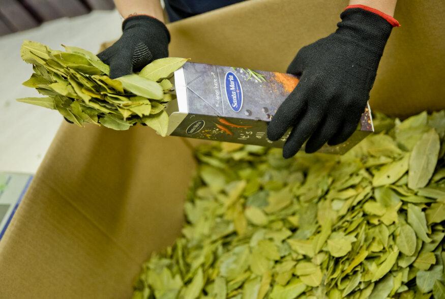 FOTOD | Avatud Tööstused: kas teadsite, et Eestis on oma suur maitseainetööstus? Vaatame selle sisse!