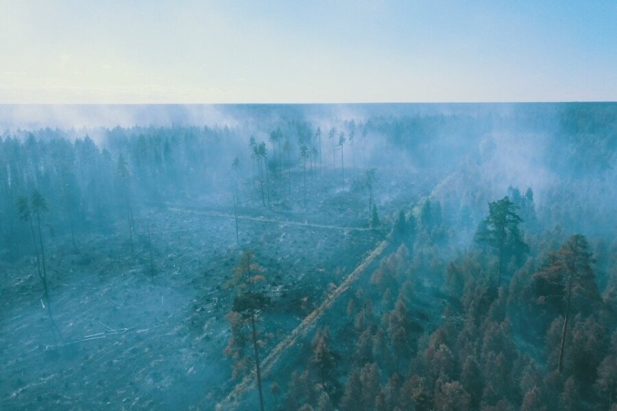 VIDEO JA FOTOD | Kümnendi suurimat metsapõlengut teist päeva kustutav vabatahtlik: Eestimaa põleb! Mis me tegema peame, kodus istuma?
