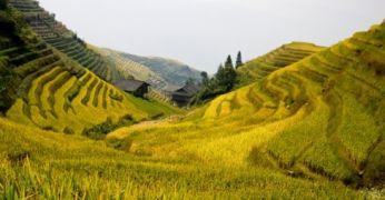 Jalgrattamatk Hiinas Riisiterrassidelt karstimägedele